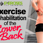 Exercise Rehabilitation of the Lower Back