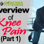 Overview of Knee Pain (Part 1)