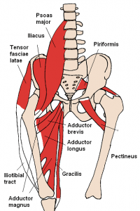 Anterior hip pain in young dancers tumblr