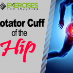 Rotator Cuff of the Hip
