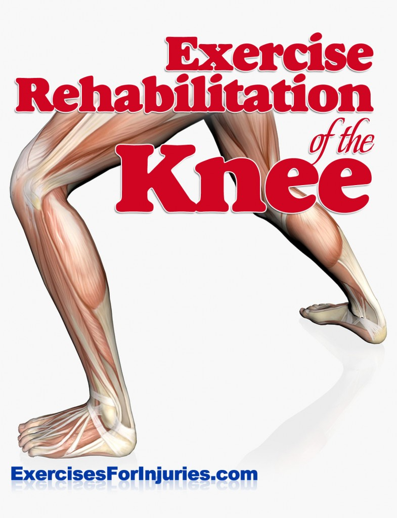 Scapular Stabilization Exercises, Jumper's Knee and ...
