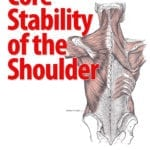 Core Stability of the Shoulder