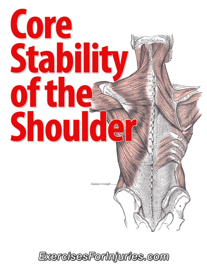Core Stability of the Shoulder - Exercises For Injuries