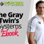 The Gray Twin's Systems Ebook