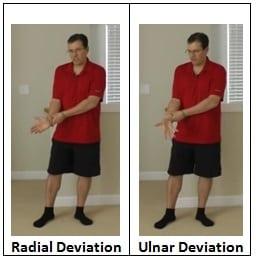 Radial & Ulnar Deviation