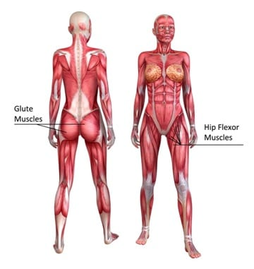 There are two main problems that we experience with our glutes.