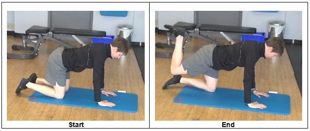 Quadruped Hip Extension 7 Bodyweight Glute Activation Exercises