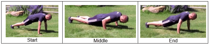 Plank Position with Push Up