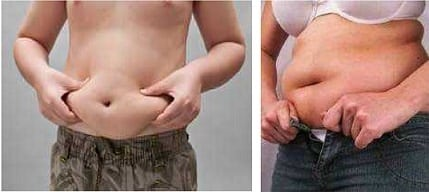 Belly Fat The Truth About Carbohydrates for Fat Loss