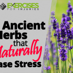 4 Ancient Herbs that Naturally Erase Stress