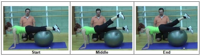 Stability Ball Plank with Alternating Leg Lift (Level 2)