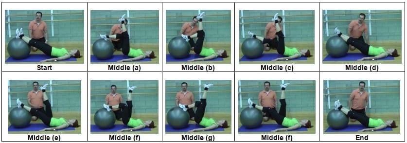 Stability Ball Single Leg Hamstring Curl (Level 2)
