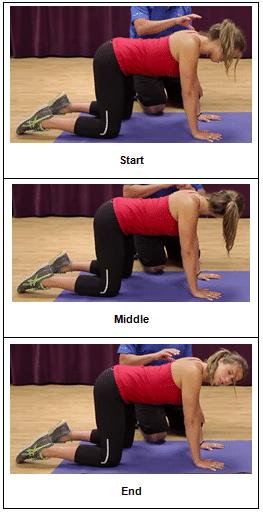 4 point neck rotation
