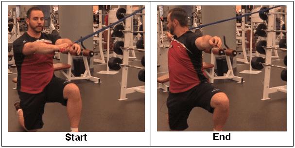 Half Kneeling Elastic Thoracic Rotations
