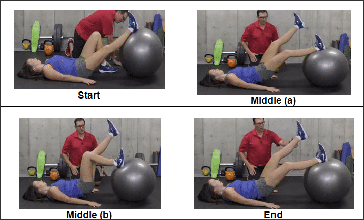 2-single-leg-hamstring-curl-on-the-ball