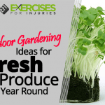 Indoor Gardening Ideas for Fresh Produce Year Round