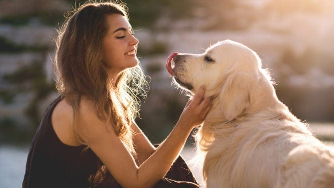 eauty woman with her pet - dog golden retriever playing outdoors.