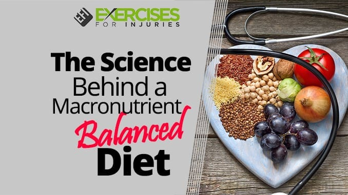 an overview of the balanced diet and the effects of malnutrition