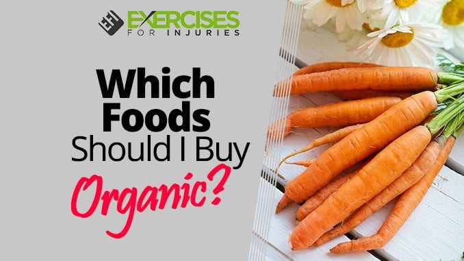 everyone should buy organic food Retail sales of organic food rose from $36 billion in 1997 to $211 billion in 2008, according to the usda, and 58 percent of americans claim they prefer to eat organic over non-organic food.
